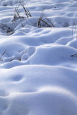 Snow drifts in snowbound winter meadow  — Stock Photo