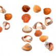 A P R I L text composed of seashells — Stockfoto #67174407
