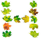 Bokstaven H består av multicolor maple leafs — Stockfoto