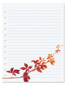 Notebook paper with autumn virginia creeper leaf — Stock Photo