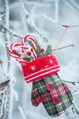Greeting card with Christmas stuff — Stock Photo