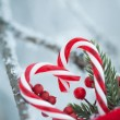 Christmas card with copy space for greeting text — Stock Photo #60151715