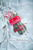 Christmas greeting card with candy canes mitten — Stock Photo