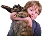 Cute blond boy with cat — Stock Photo