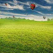 Field with air balloons — Stock Photo