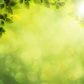 Abstract natural background — Stock Photo