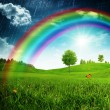 Summer background with beauty rainbow — Stock Photo #58790155