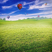 Field with lot of air balloons — Stock Photo