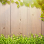 Background with foliage, fence and sunlight — Stockfoto