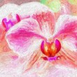 Pink orchid, fine art simulation — Stock Photo #67583395