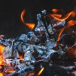 Burning flame and firewoods — Stock Photo #73543487