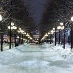 Winter in Stockholm, Sweden — Stock Photo #59744803