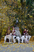 Couples in traditional medieval costumes with wolfhounds dogs — Stock Photo