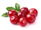 Ripe cranberry — Stock Photo