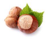 Hazelnuts with kernels — Stock Photo