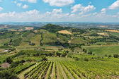 Typical Italian landscape in Tuscany — Stock Photo