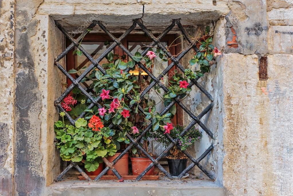 Ventana En Una Antigua Casa Con Macetas De Flores