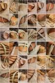 Bread and corn , collage — Foto de Stock