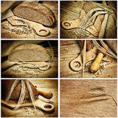 Bread and corn, collage — Foto de Stock