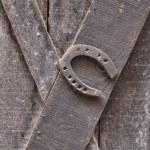 Old rusty horseshoe — Stock Photo #57669235