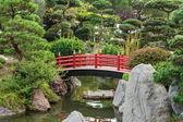 Japanese garden with bridge — Stock Photo