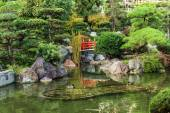 Lake with ducks in Japanese garden — Stock Photo