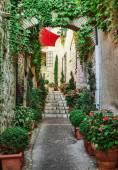 Narrow street with flowers — Stock Photo