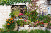 Rural house with flowers in pots — Stock Photo