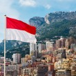 Monaco flag on the background of the city — Stock Photo #59089367
