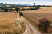 Deserted country road — Stock Photo