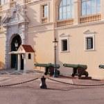 Prince's Palace of Monaco — Stock Photo #65069781