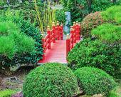 Garden in Monte Carlo — Stock Photo