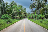 Highway in the tropics — Stockfoto