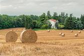 Typical Tuscan farmhouse — Stock Photo