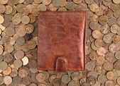 Leather Wallet on a Russian coins — Stock Photo