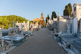 Old Chateau Cemetery in Nice on Castle Hill — Stock Photo