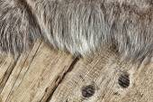 Old boards and reindeer fur — Stock Photo