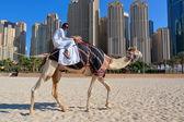 Man riding a camel on the beach — Stock Photo