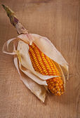 Ear of dried corn — Stock Photo