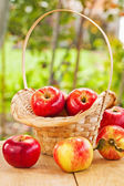 Ripe apples in basket — Stock Photo