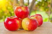 Small stack of apples on wooden table in garden — Stock Photo