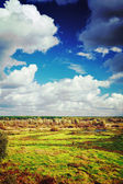 View on the autumn field and cloudy sky instagram stile — Stock Photo