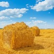 Bales of straw on harvested field and beauti cloudy sky — Stock Photo #57654095