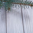 Branch of pinetree on old white boards — Stock Photo #61177285