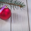 Christmas ball and pinetree branch — Stock Photo #61177295