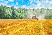 Combine harvester on wheat field — Stock Photo