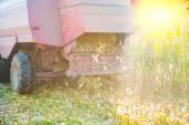 View on combine harvester — Stock Photo