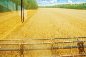 View from cabin of combine — Stock Photo