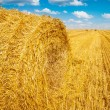 View on bale of straw and harvested field — Stock Photo #67093329