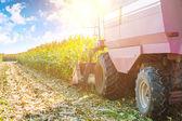 Combine harvester in process of harvesting — Stock Photo